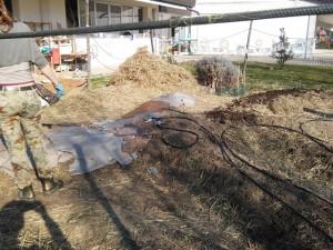 Creazione di un orto sinergico in una scuola dell'infanzia